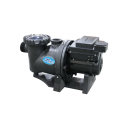 AquaGuard 2.4HP Variable Speed Pool Pumps BACK SIDE VIEW